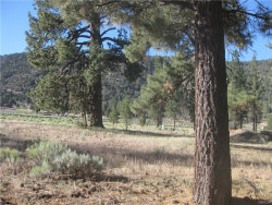 Photo of 2824 Erwin Ranch Road, Big Bear City, CA 92314 (MLS # 32002829)
