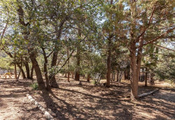 Photo of 0 Kern Avenue, Sugarloaf, CA 92386 (MLS # 32003992)