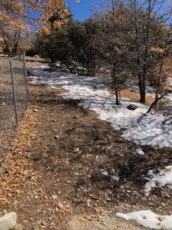 Photo of 1123 Bruin Trail, Fawnskin, CA 92333 (MLS # 32006412)