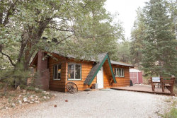 Photo of 1223 Canyon Road, Fawnskin, CA 92314 (MLS # 3186525)