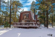 Photo of 1125 Pine Lane, Big Bear City, CA 92314 (MLS # 31901268)