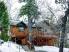 Photo of 1129 Sheephorn Road, Big Bear City, CA 92315 (MLS # 31901341)