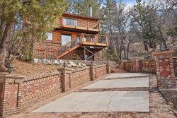 Photo of 43422 Sheephorn Road, Big Bear Lake, CA 92315 (MLS # 31902504)
