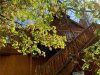 Photo of 1259 Siskiyou Drive, Big Bear Lake, CA 92315 (MLS # 32005163)