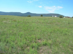 Photo of 242 S Elk Ridge Road, Lot B, Young, AZ 85554 (MLS # 4813473)