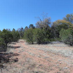 Photo of 4453 W Westridge Drive, Lot 22, Young, AZ 85554 (MLS # 5108031)