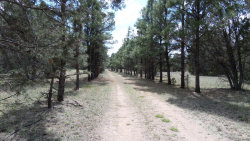Photo of 394 Forest Service 63 Road, Lot 1, Young, AZ 85554 (MLS # 5275575)