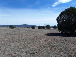 Photo of 189 S Jearger Lane, Lot E, Young, AZ 85554 (MLS # 5406281)