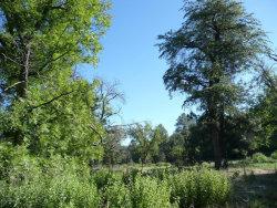 Photo of 200 E Cline Crossing, Lot -, Young, AZ 85554 (MLS # 5470471)