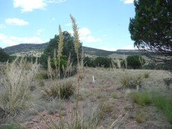 Photo of 400 S Rolling Hills Road, Lot 15, Young, AZ 85554 (MLS # 5472538)