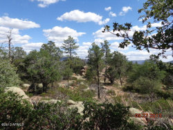 Photo of 390 N Ike Clark Parkway, Lot B, Young, AZ 85554 (MLS # 5485701)