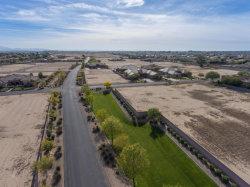 Photo of 18147 W Palo Verde Court, Lot 12, Litchfield Park, AZ 85340 (MLS # 5538939)