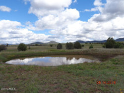 Photo of 415 S Rolling Hills Road, Lot 4, Young, AZ 85554 (MLS # 5599664)