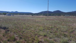 Photo of 47223 N 288 Highway, Lot B, Young, AZ 85554 (MLS # 5608250)