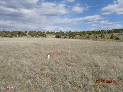 Photo of 472 S Dutchman's Trail, Lot 0, Young, AZ 85554 (MLS # 5621888)