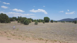 Photo of 145 E Mail Trail Road, Lot 1, Young, AZ 85554 (MLS # 5624476)