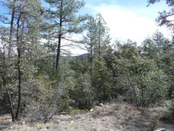 Photo of 16 N Jack Mountain Loop, Lot 16, Young, AZ 85554 (MLS # 5631289)
