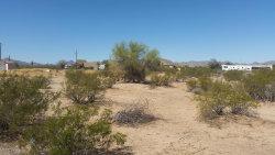 Photo of 870 S Tusa Road, Lot 203, Maricopa, AZ 85139 (MLS # 5632954)