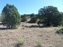 Photo of 889 N Winchester Drive, Lot 1, Young, AZ 85554 (MLS # 5662708)