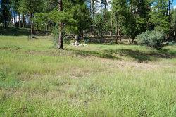 Photo of 184 N Wild Cat Circle, Lot 151, Christopher Creek, AZ 85541 (MLS # 5671573)