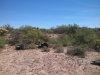 Photo of 0 E Saddle Horn Trail E, Lot 109, Florence, AZ 85132 (MLS # 5675450)