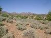 Photo of 14034 N Sunflower Drive, Lot 19, Fountain Hills, AZ 85268 (MLS # 5690479)