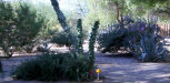 Photo of 10210 N 64th Place, Lot 6, Paradise Valley, AZ 85253 (MLS # 5690875)