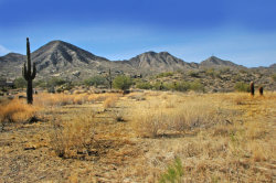 Photo of 14352 E Desert Tortoise Trail, Lot 30, Fountain Hills, AZ 85268 (MLS # 5711242)