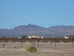 Photo of 3086x N 233rd Avenue, Lot 1, Wittmann, AZ 85361 (MLS # 5721670)