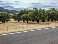 Photo of 09D N 288 Highway, Lot 31, Young, AZ 85554 (MLS # 5734964)