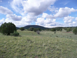Photo of 565 N Winchester Drive, Lot B, Young, AZ 85554 (MLS # 5738047)