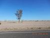 Photo of 3250 N Parkview Drive, Lot 26, Eloy, AZ 85131 (MLS # 5743025)