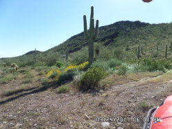 Photo of 30602 W Black Mountain Road, Lot 127, Wittmann, AZ 85361 (MLS # 5753255)