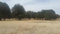 Photo of 49969-B N Az Highway 288 Highway, Lot 0, Young, AZ 85554 (MLS # 5754281)