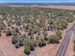 Photo of 2530 W Poco Bueno Drive, Lot -, Clay Springs, AZ 85923 (MLS # 5780798)