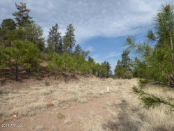 Photo of 885 E Forest Svc Rd 512 --, Lot B, Young, AZ 85554 (MLS # 5781133)