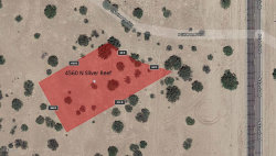 Photo of 4560 N Silver Reef Drive, Lot -, Eloy, AZ 85131 (MLS # 5787698)