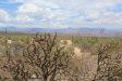 Photo of 138th E Montello Road, Lot -, Scottsdale, AZ 85262 (MLS # 5794221)