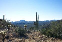 Photo of 0 N Lake Pleasant Road, Lot 55 - 26.19 Acres, Morristown, AZ 85342 (MLS # 5800018)