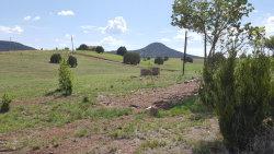 Photo of 135 S Cohea Lane, Lot -, Young, AZ 85554 (MLS # 5800586)