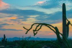 Photo of 10355 E Desert Vista Drive, Lot 1A, Scottsdale, AZ 85255 (MLS # 5808560)