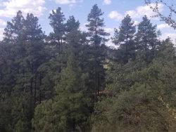 Photo of 27 W Coyote Drive, Lot 27, Strawberry, AZ 85544 (MLS # 5817920)