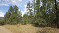 Photo of 35 W Forest Svc Rd 200 --, Lot 35, Young, AZ 85554 (MLS # 5853717)