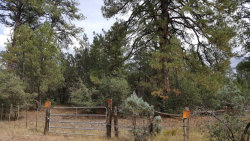 Photo of 34 W Forest Svc Rd 200 --, Lot 34, Young, AZ 85554 (MLS # 5853719)