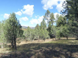 Photo of 33 W Forest Svc Rd 200 --, Lot 33, Young, AZ 85554 (MLS # 5853720)