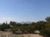 Photo of 0 W Whirly Bird Road, Lot 131, Maricopa, AZ 85139 (MLS # 5856217)