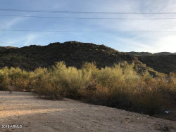 Photo of 1728 E Dobbins Road, Lot 1, Phoenix, AZ 85042 (MLS # 5856525)