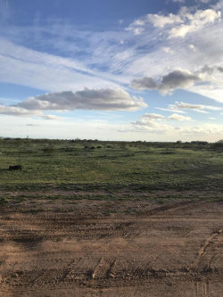 Photo of 309XX W Forest Pleasant Place, Lot 109, Wittmann, AZ 85361 (MLS # 5883024)