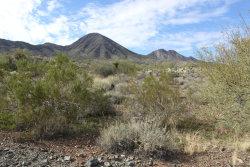 Photo of 16136 N Desert Fox Parkway, Lot 111, Fountain Hills, AZ 85268 (MLS # 5883161)