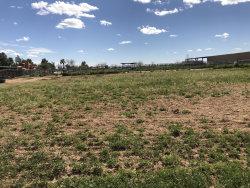 Photo of 4620 N Perryville Road, Lot 188, Litchfield Park, AZ 85340 (MLS # 5894961)